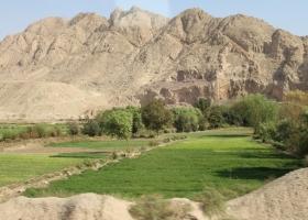 IRAN_164